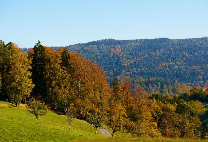 Zum Indian Summer ins Albtal